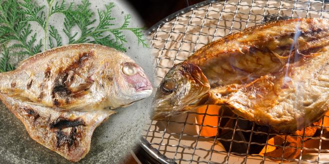 日本海,山陰,鳥取,境港,干物,鯛,鯵の開き,はたはた,カレイ