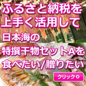 日本海,山陰,鳥取,境港,干物,ふるさと納税
