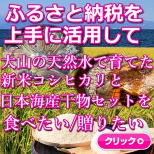 コシヒカリ,新米,大山,日本海,干物,ふるさと納税