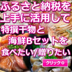 日本海,山陰,鳥取,境港,干物,海鮮