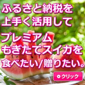大栄すいか,鳥取,ふるさと納税