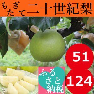 ふるさと納税鳥取名産品カニ・梨・そば・干物のイメージ