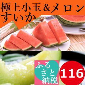 鳥取,大栄,小玉すいか,畑,糖度,13度,14度,西瓜,メロン