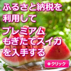 鳥取,大栄すいか,ふるさと納税,甘い,糖度13度以上,糖度14度