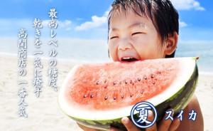 夏 スイカ 最高レベルの糖度、渇きを一気に癒します