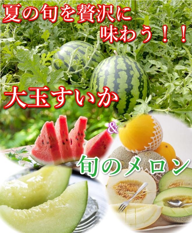 鳥取 大栄スイカ メロン