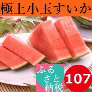 鳥取,大栄,小玉すいか,畑,糖度,13度,14度,西瓜