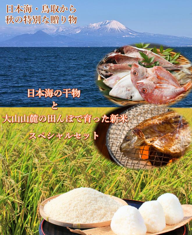 新米,大山,日本海,干物