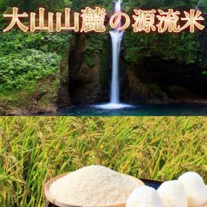 大山山麓,米,コシヒカリ,天然水,源流米