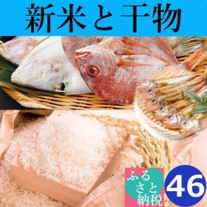 コシヒカリ,新米,大山,日本海,干物